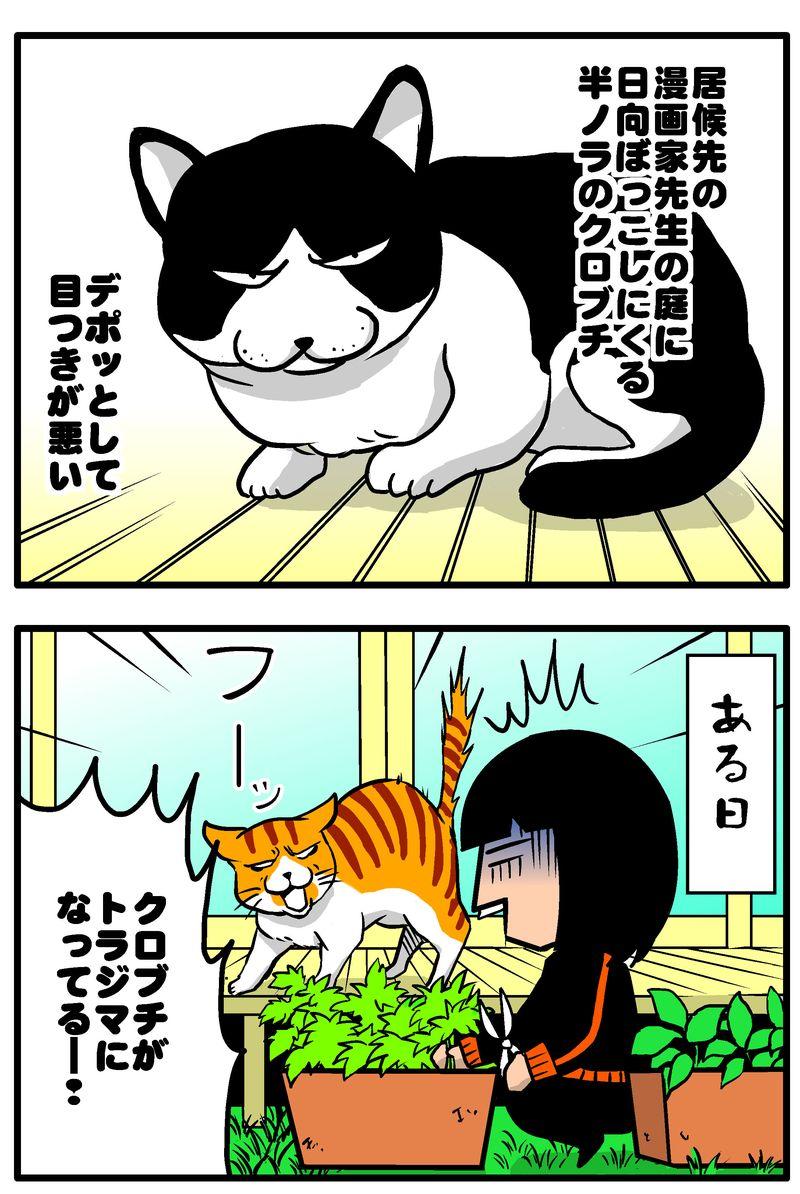 ボス猫4統合ブログ1