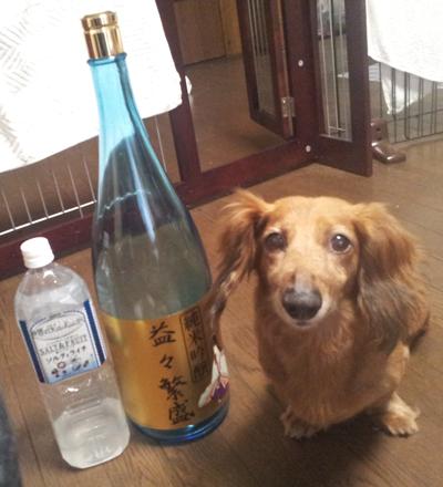 モクと日本酒