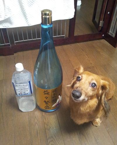 モクと日本酒2