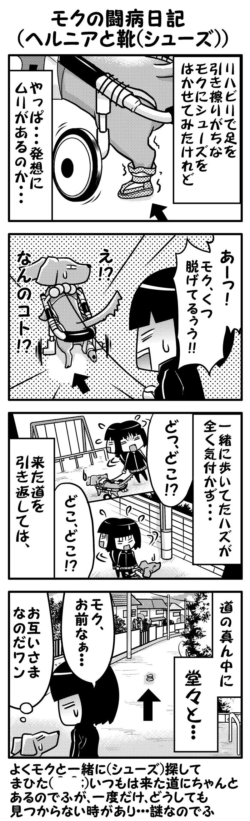 モク闘病日記13シューズ