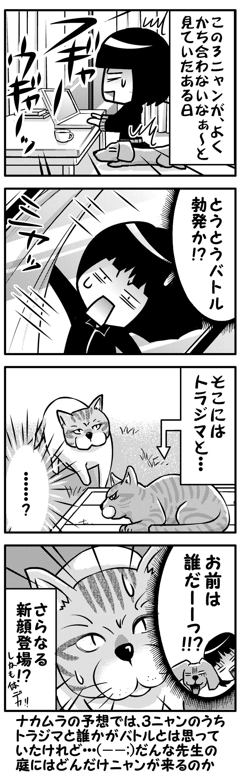 モクと庭ニャンコの乱3(後)