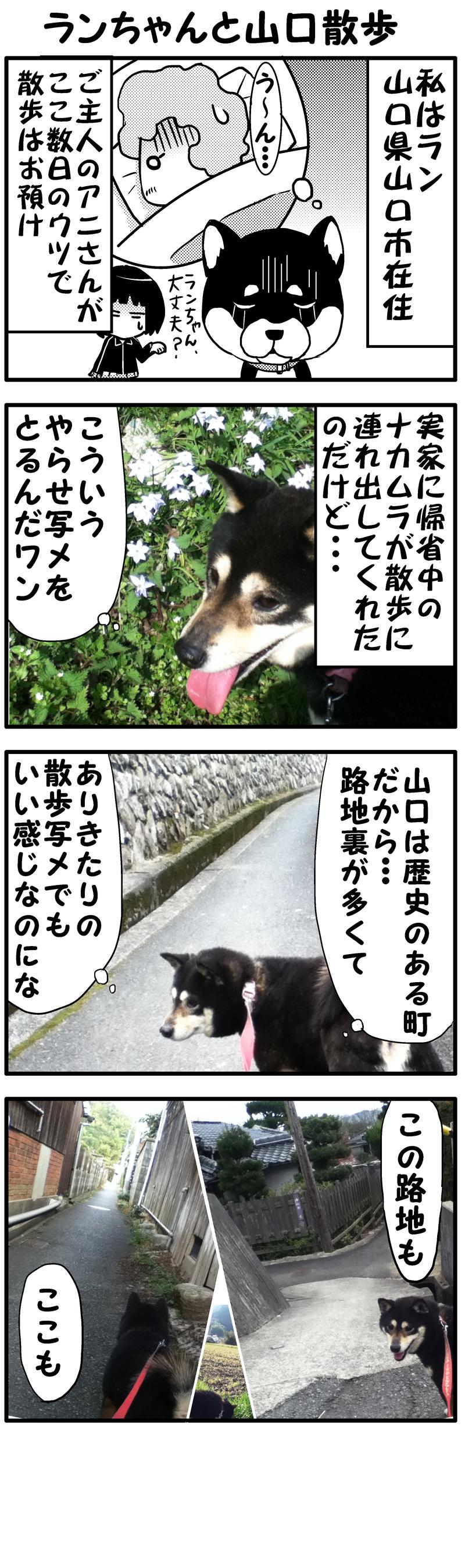 ランちゃんと山口散歩(前)