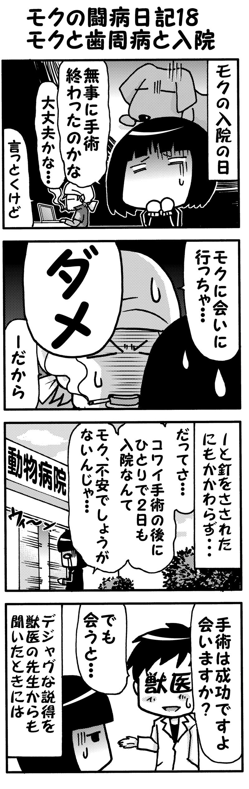 モクの闘病日記18・・・入院モノクロ(前)