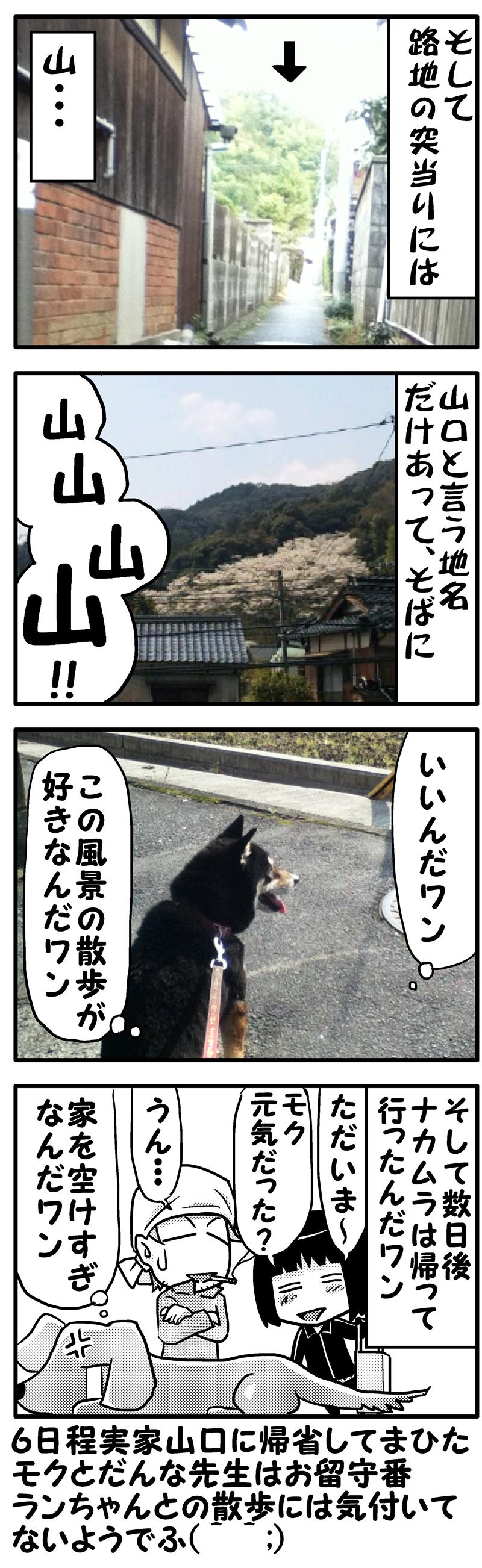ランちゃんと山口散歩(後)