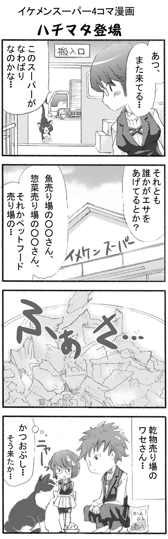 イケメンスーパー10-2