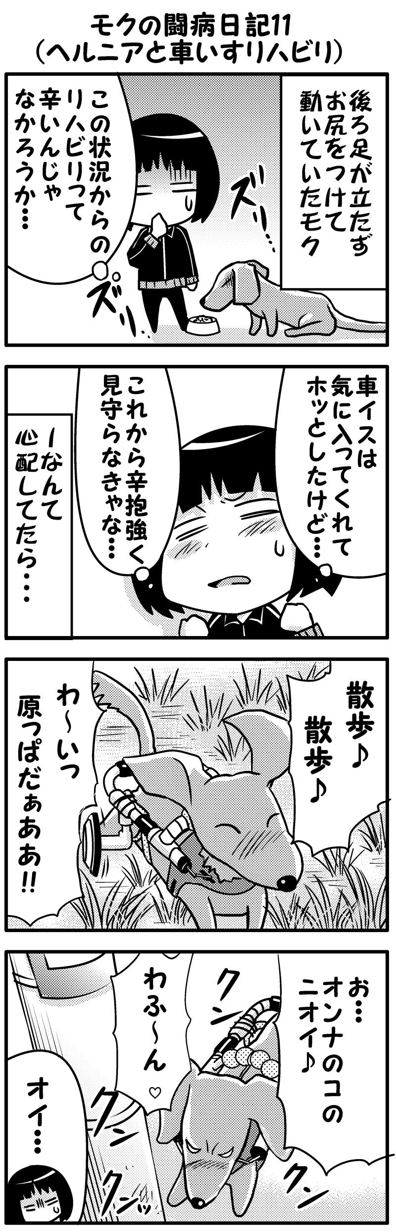 モク闘病日記11前