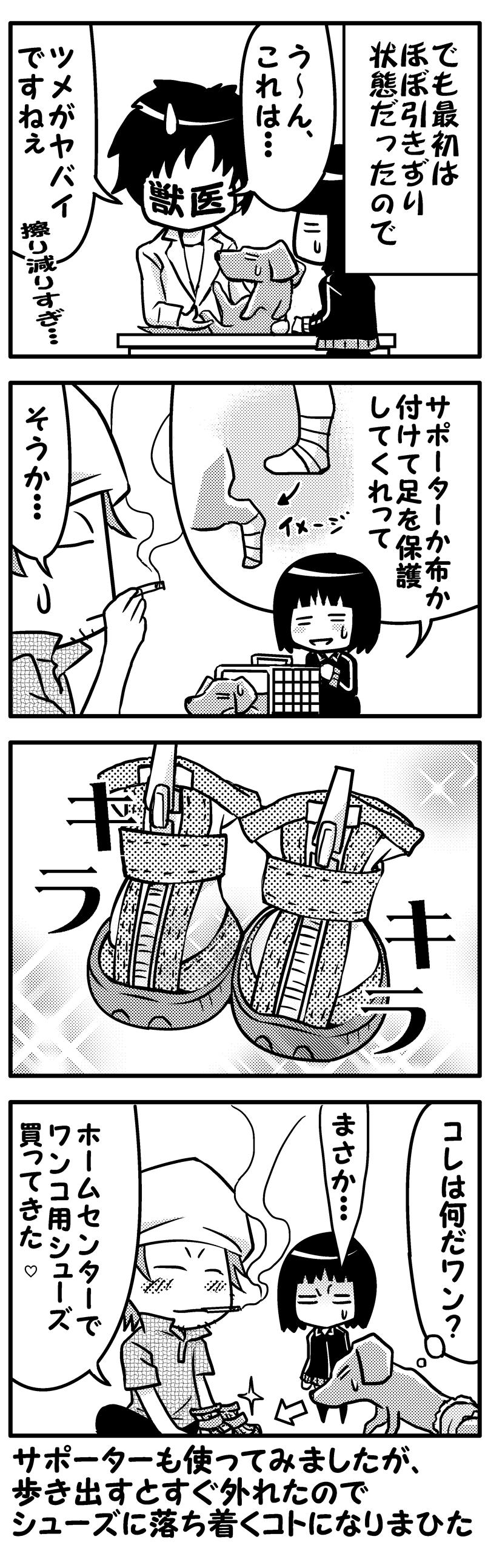 モク闘病日記12(後)