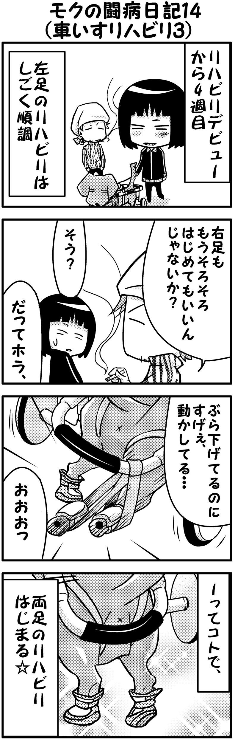 モクの闘病日記15(後)
