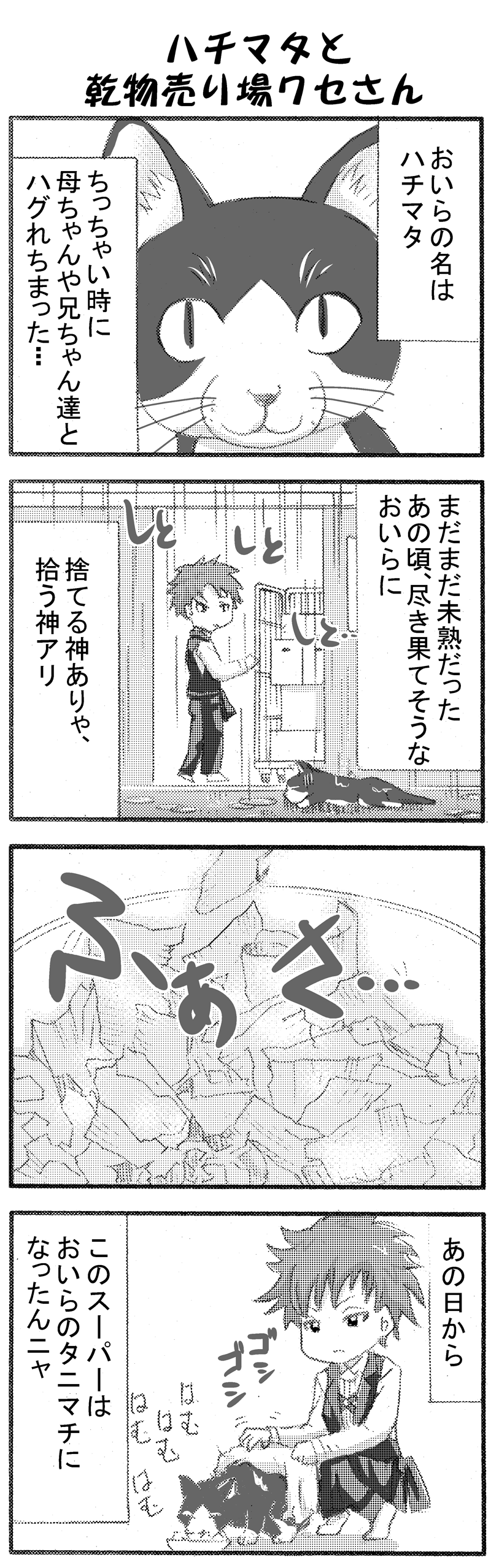 イケメンスーパー10-2-2